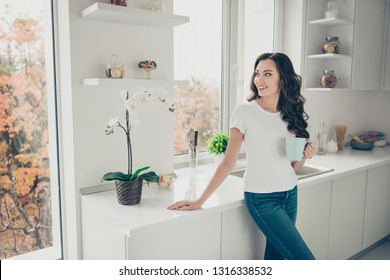 Close up photo beautiful brunette she her lady homey indoors watch through window hold beverage glad clean flat wearing domestic home apparel clothes outfit comfy table kitchen