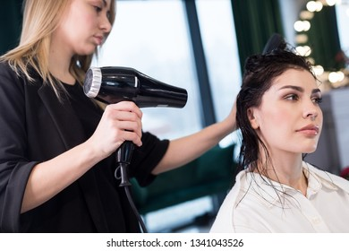 Close up photo of beautiful long-haired woman getting new hairstyle in barber shop. Professional hairdresser using blow dryer and hairbrush while styling hair of female client. Beauty concept