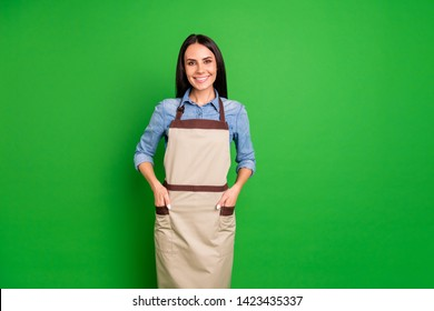 Close up photo beautiful she her lady hands arms pockets assure customers buy buyers best service organization self-confident wear jeans denim shirt covered work apron isolated black grey background