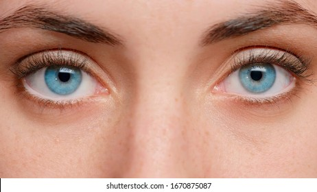 Close up photo. Blue eyes of the girl near. Clean skin and well-groomed. Beautiful eyebrows. In the eyes of reflection.