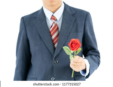 Close up photo of businessman in suit holding with red rose on white background