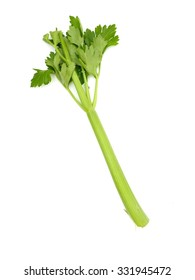 A close up photo of celery stalks