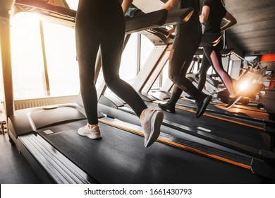 Close up photo of female legs in sportswear and sneakers running on a treadmill in the gym against the window. Sun glare from the window. Concept of healthy sports life..