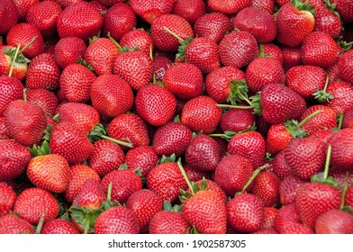 Close up photo of fresh strawberries on the food market of Corfu Greece.