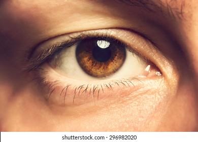 Close up photo of human eye. Toned photo