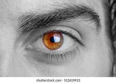 Close up photo of man's eye