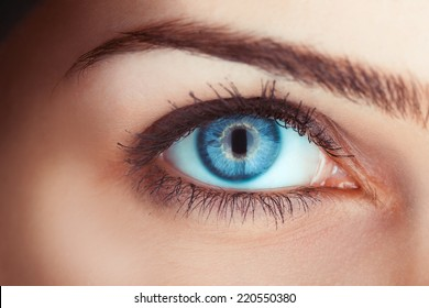 Close up photo of woman's blue eye in studio