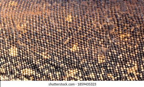 Close up photograph of the scales of an Australian Sand Goanna