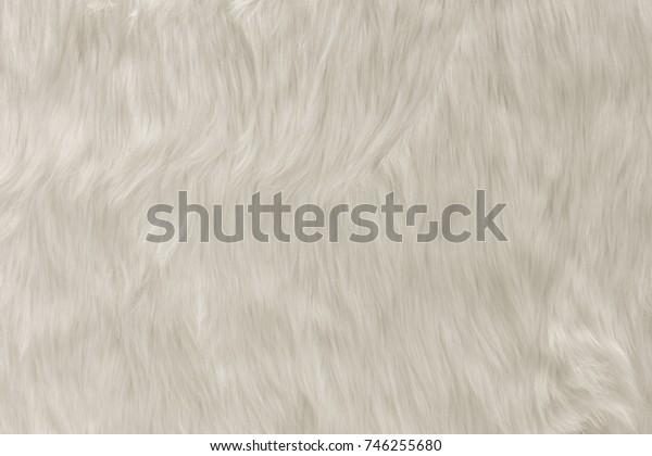 Close up photography of white fur carpet