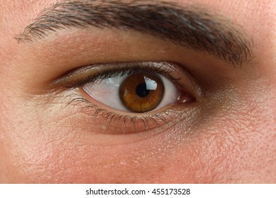 Close up picture of brown human eye. Young man with long eyelash