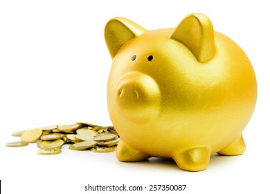Close up of piggy bank and coins on white background