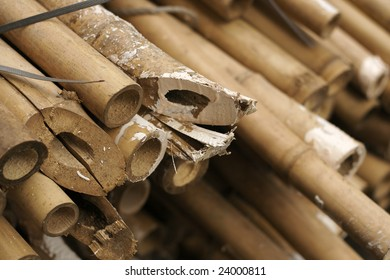 Close up of a pile of bamboo that are still being used in Hong Kong to build large scaffolds during building maintenance