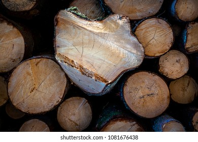 Close up of a pile of timber with sunlight shining in the center.