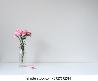 Close up of pink carnations in glass jar with fallen blossom on whtie table against wall (selective focus)