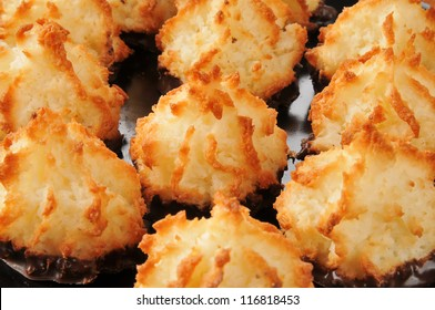 Close up of a plate of coconut macaroons, selective focus on center cookie