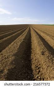 Close up of ploughed field