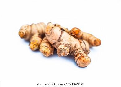 Close up of popular Indian & Asian raw organic herb or ayurvedic herb isolated on white i.e. Amba haldi or Mango ginger or white ginger or Curcuma amada.