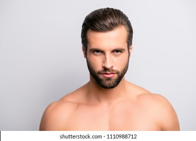 Close up portrait of attractive confident concentrated focused seductive guy with ideal face features bearded with modern stylish trendy hairdress isolated on gray background