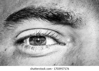 Close up portrait of a Caucasian males eye with dark brown eyelashes and eyebrow