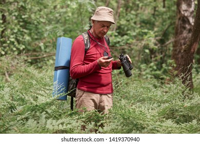 Close up portrait of concentrated eldery male wearing red casual sweater, pants and cap, standing in forest with compass and binoculars in hands, tries to find way, backpacking while having vacation.