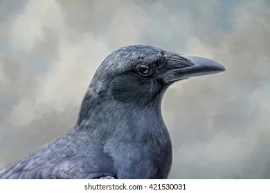 Close up portrait of a crow with a textured background.