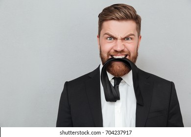 Close up portrait of a funny crazy businessman in suit biting his necktie while standing isolated over gray background