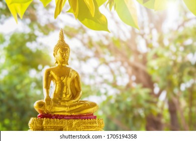 Close up portrait golden Buddha statue  sitting on a golden base with green blurred nature background with green leaves nature foreground, Buddhist Sabbath Day concept.