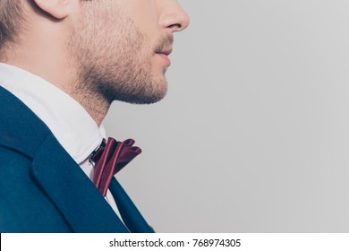 Close up portrait of half face profile of bearded man in tux with red bow tie over grey background