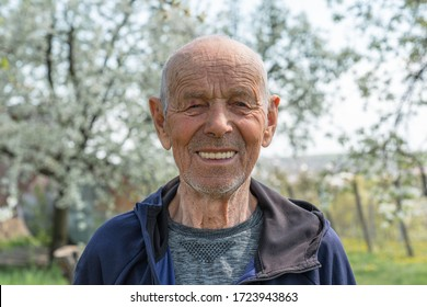 Close up portrait of a happy old man pensioner in sportswear who smiling and looking at the camera, blooming blurred trees on the background