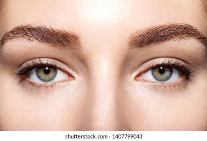 Close up portrait of nice female green eyes. Woman with fresh clean skin and perfect eyebrows looking at camera with calmness. Beauty and skincare concept