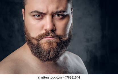 Close up portrait of shirtless beard male on grey background.