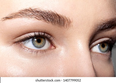 Close up portrait of tender gorgeous female green eyes. Young woman with natural clean skin and well-favoured eyebrows. Beauty and skincare concept