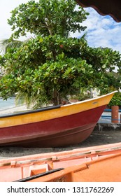 Close up portrait of a traditional red & yellow yole fisherman small boat, in the sand under a tropical green tree, with blue sky, in Caribbean beach of Sainte Luce, Martinique, Antilles, West Indies.