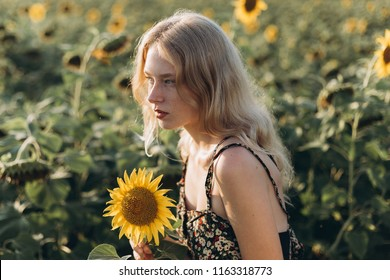 Close up portrait of young blondie freckled caucasian model in field of sunflowers