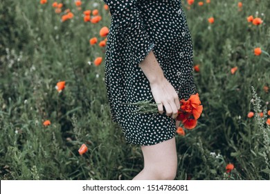 Close up portrait of young ginger sensual pretty caucasian lovely girl with freckled face in green field with red poppies. Beauty, sexuality, red headed girl concept