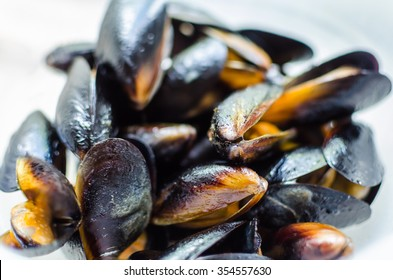 Close up prepared blueshell mussels with garlic in white wine sauce served on the white background. Typical italian cuisine or mediterranean style of dish or snack for dinner