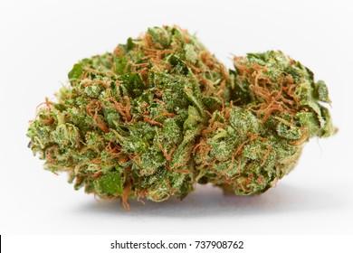 Close up prescription medical marijuana strain AK-47 strain on white background