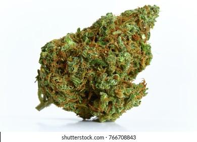 Close up of prescription medical marijuana strain XJ13 sativa dominant strain isolated on white background
