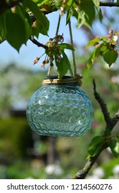 Close up of pretty light teal glass solar lampion lamp hangin on a brach in a tree