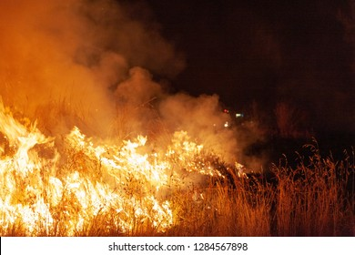 Close up of raging wildfire grassfire with emergency vehicle lights in background. Inspiration image for bushfire warning, summer bushfire warning poster or meme in portrait format