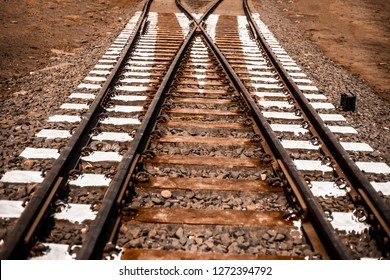 Close up of railway tracks passing or running straight through a forest type area with having surroundings dried out.