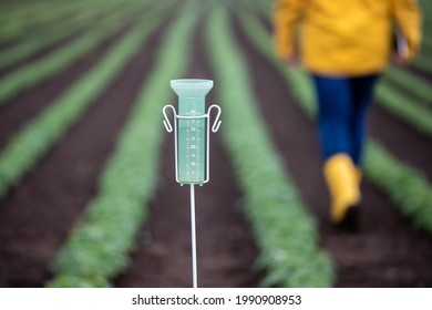 Close up of rain gauge instrument in field after heavy rain in spring time. Farmer walking in background