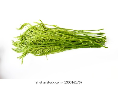Close up raw freshness vegetable Acacia Pennata, or cha-om in Thai name ,a shrub or small tropical tree ,leaves are bipinnate with linear-oblong. smell a little bit strong, young leaves eatable,