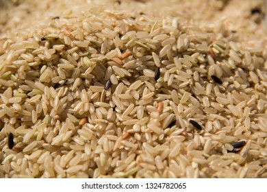 Close up Raw long grain organic rice grain