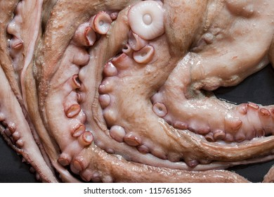 Close up of raw octopus from above.