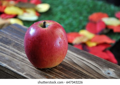 Close up red apple with green grass and colorful leaves on background