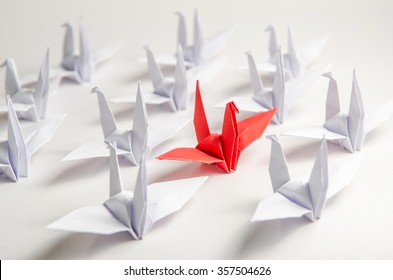 Close up red bird flying different through a group of white bird, Game changer business.