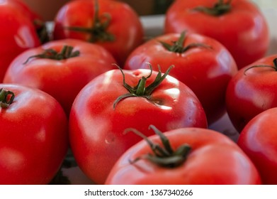 Close up of red, fresh and ripe tomatoes on the table.
