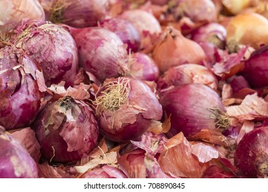 Close of red Spanish Onions