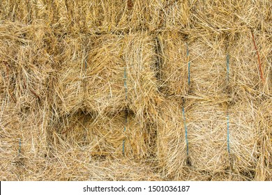 close up of rice straw texture background
